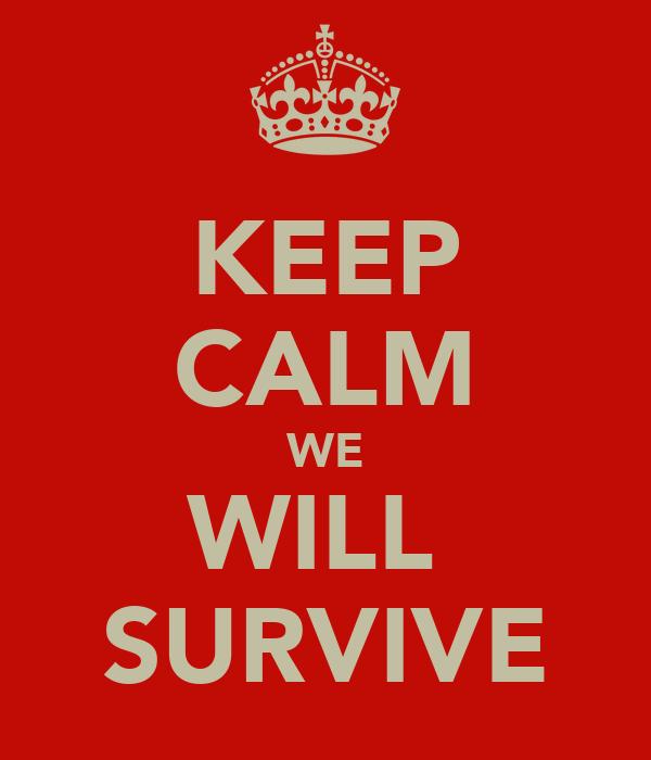 Keep Calm We Will Survive Poster  Kieran  Keep Calmomatic
