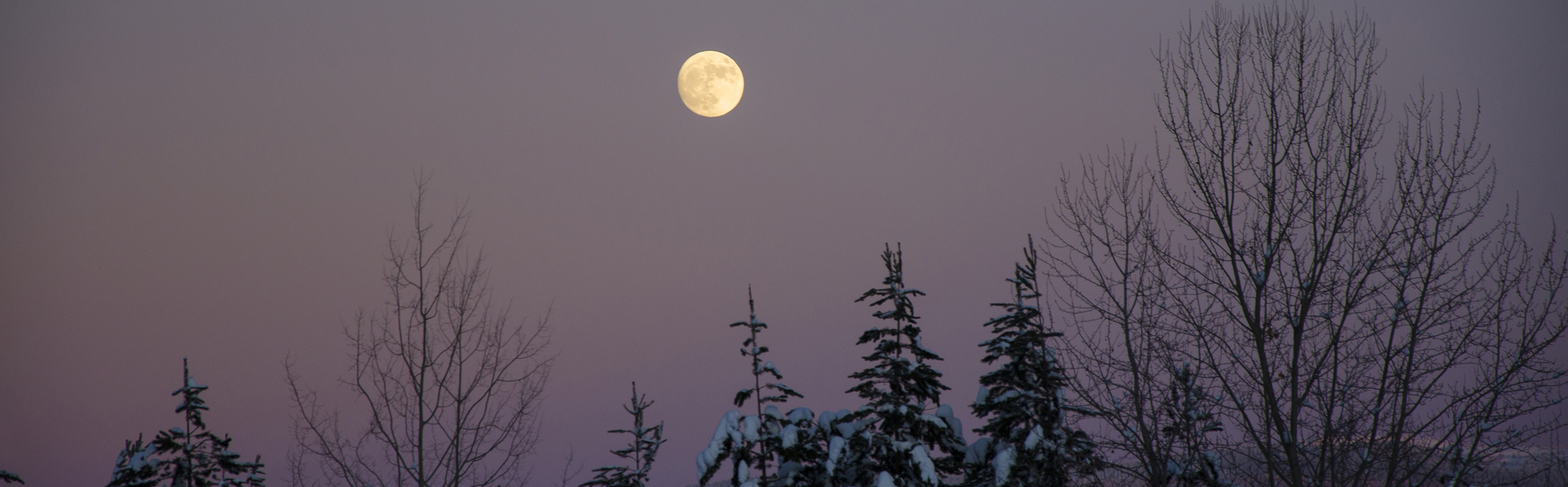 Moon over Larch Hills