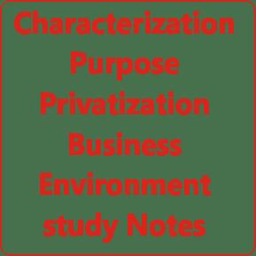 Characterization Purpose Privatization Business Environment study Notes