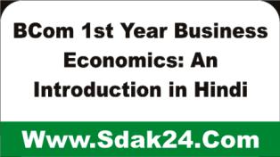 Business Economics: An Introduction