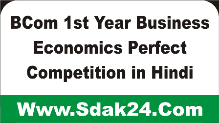 BCom 1st Year Business Economics Perfect Competition in Hindi