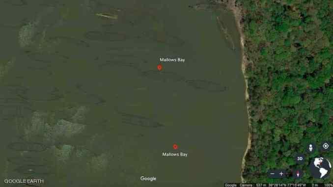 """ظهر """"الأسطول الشبح"""" من السفن الخشبية إلى العيان (google earth)"""