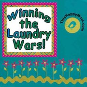 Laundry Soap Challenge from thishappymom.com  tide vs homemade