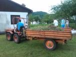 Urejanje okolice barake (odstranjevanje mreže, priprava za betonažo mulde)_2