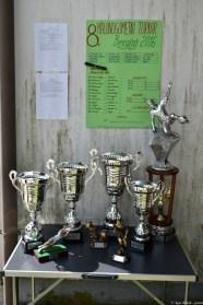 8-turnir-breginj-2016_014