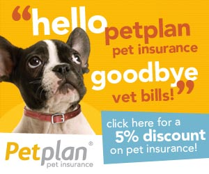 2014 Pet Insurance Shootout: AND THE WINNER IS…