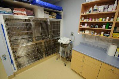 Patient Waiting Room