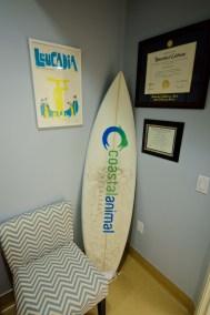 Coastal Surfboard