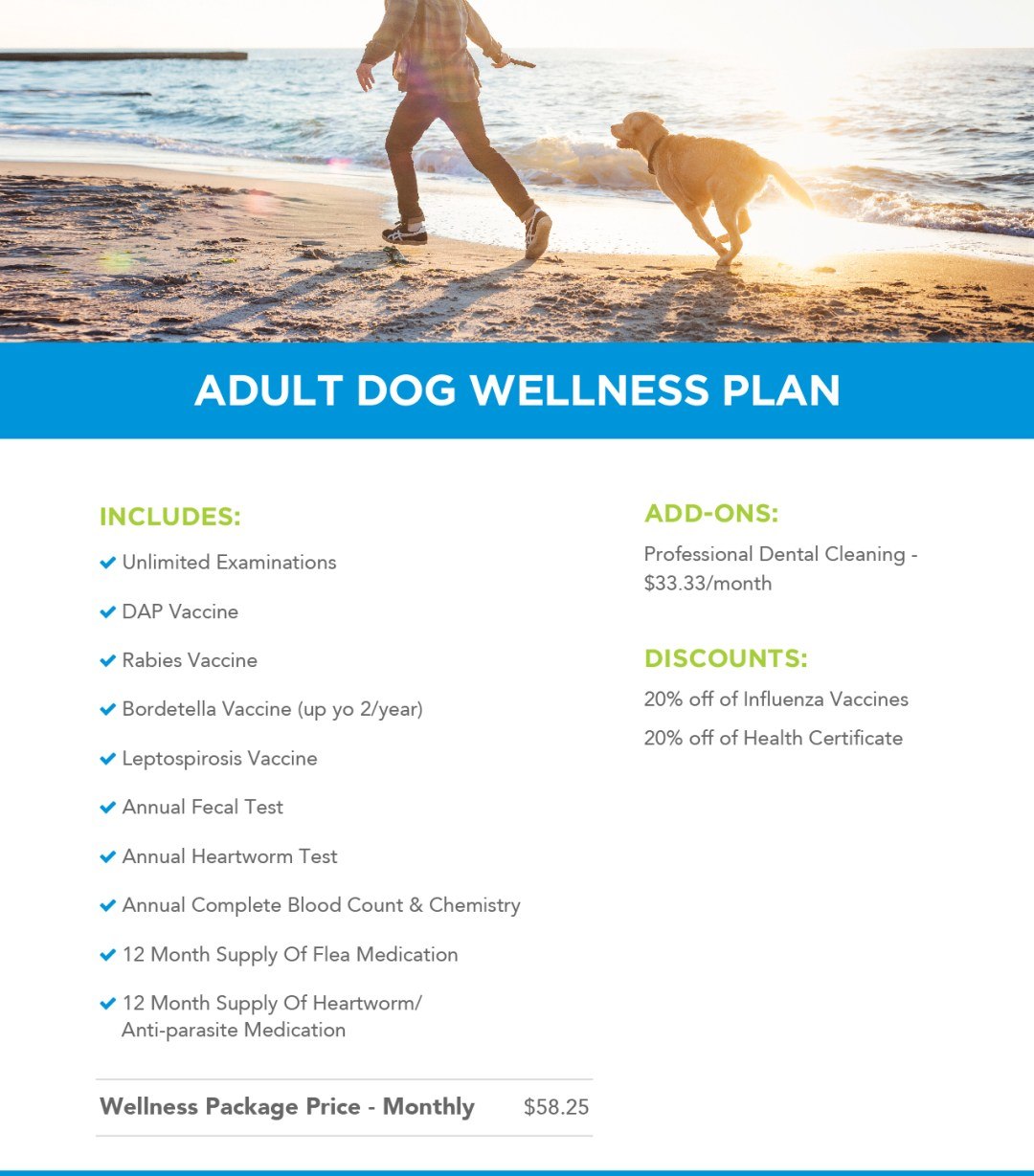 Adult dog wellness plans header image