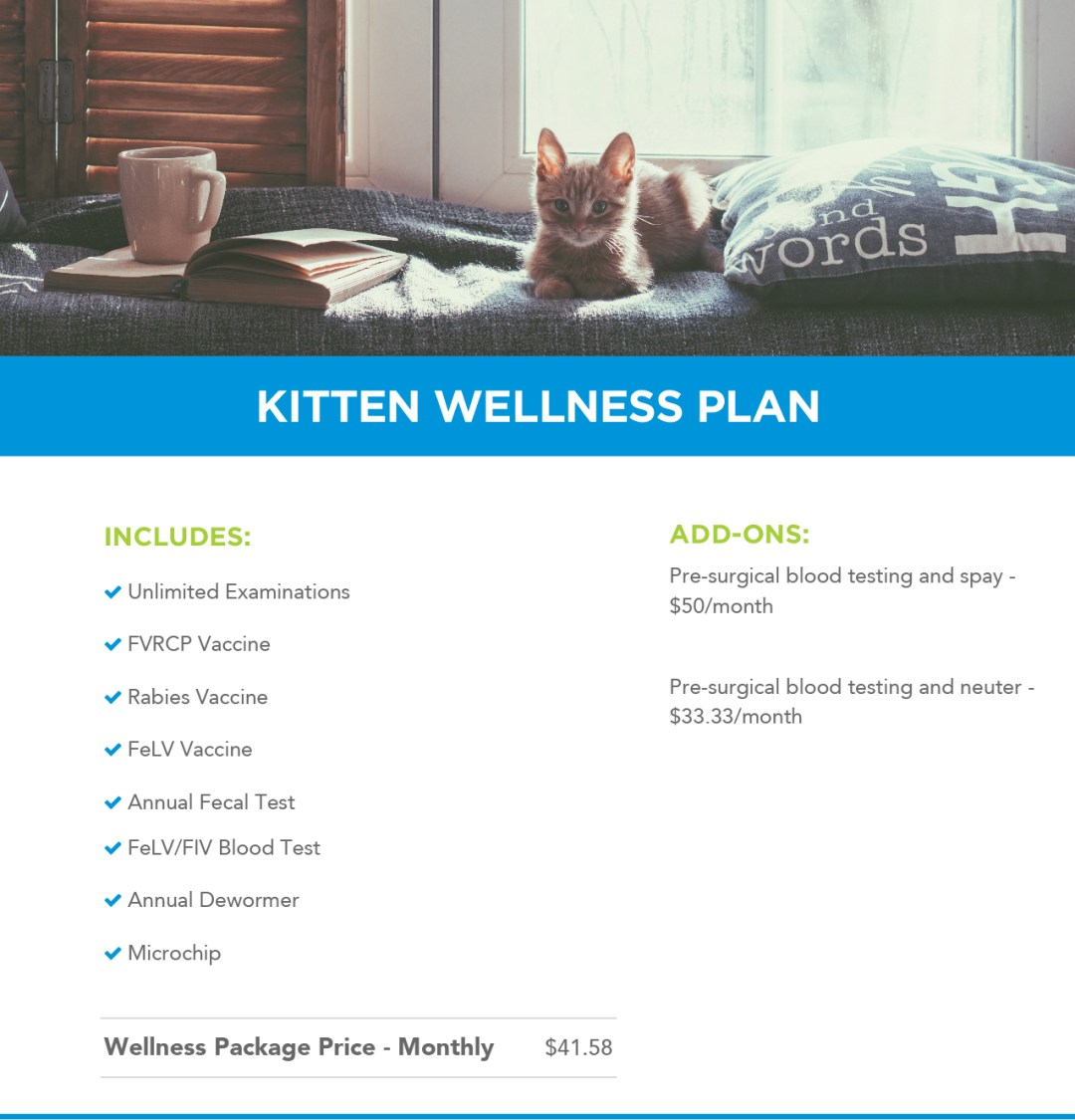 Kitten Wellness Plans Banner