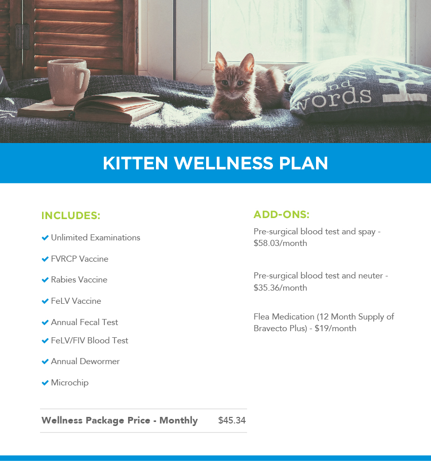 Kitten Wellness Plans Banner