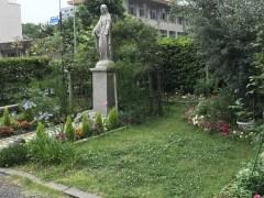 すっかり緑のおおわれた聖書の庭