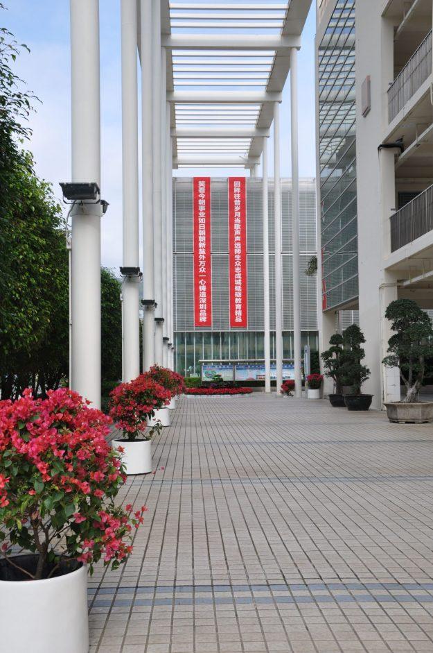 Yantian Foreign Language School, Yantian Foreign Language School, SDE Seadragon Education, SDE Seadragon Education
