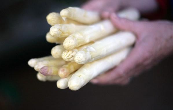 在德国,一年中只有三个月能吃到新鲜芦笋。(Johannes Simon/Getty Images)