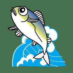 Aji Taro of a fish tells smartly.