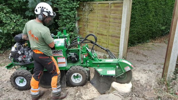 SDM Tree Services Stump Grinding