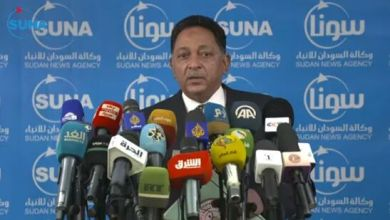 المهندس خيري عبدالرحمن وزير الطاقة المكلف