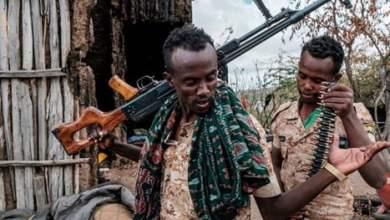 الأمم المتحدة توافق على تحقيق مشترك في تيغراي الإثيوبية