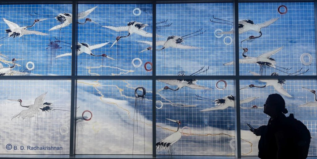 Ben Radhakrishnan - Admiring Cranes Flying Behind Square Windows