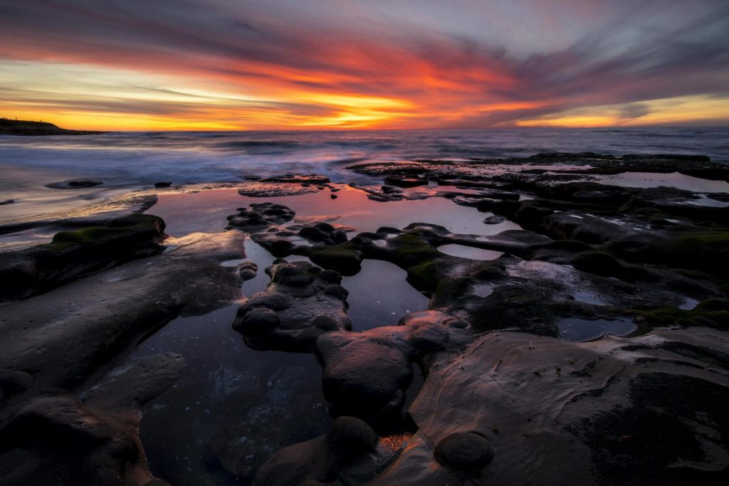Hon - Tom Applegate - Sunset