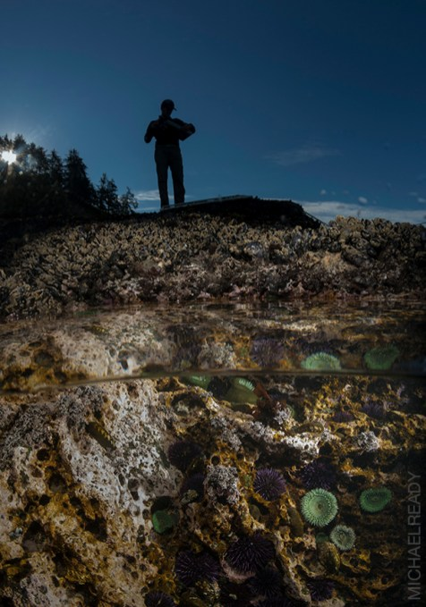 Tidepools above and below the waterline