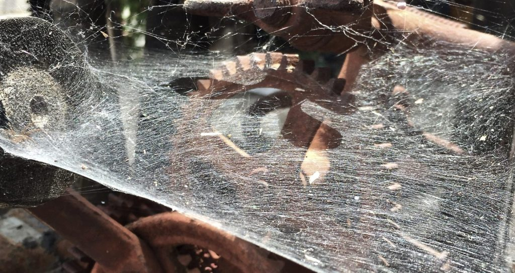 Don Tynan - Spiderwebs
