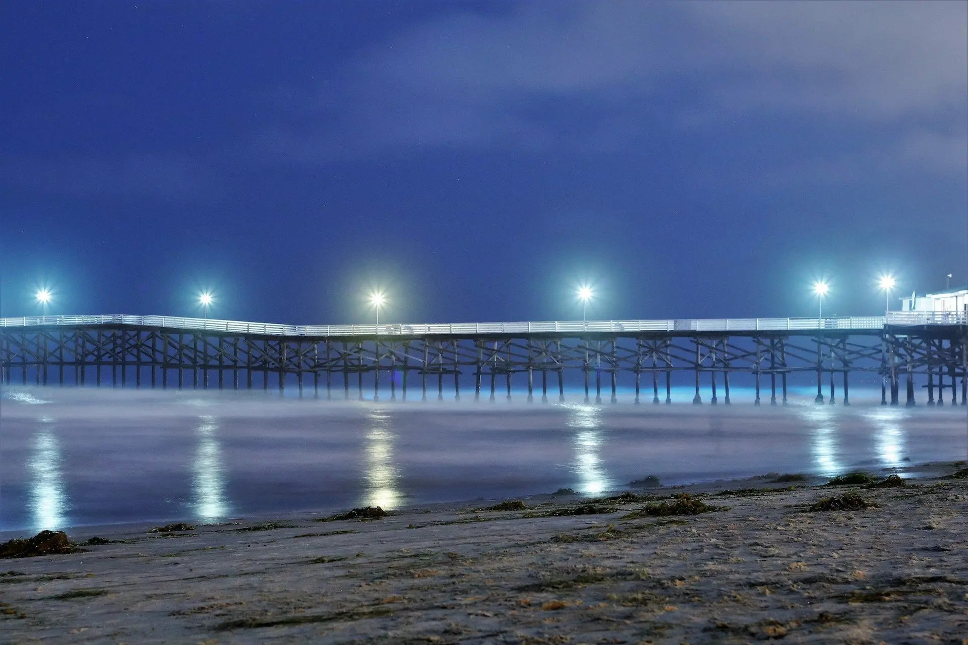 Barbara Whitman - The PB Pier