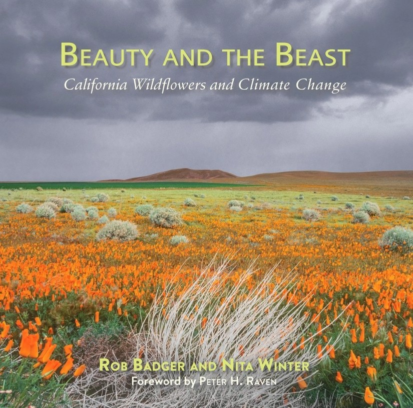 """""""Beauty and Beast: California's Wildflowers and Climate Change"""" coffee table book."""