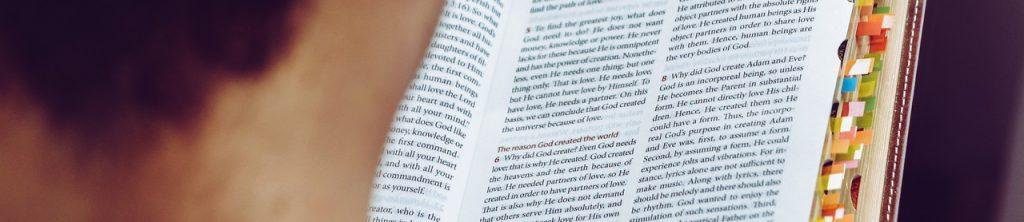 Book Read Text Wisdom  - wal_172619 / Pixabay