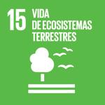 SDG15 icon