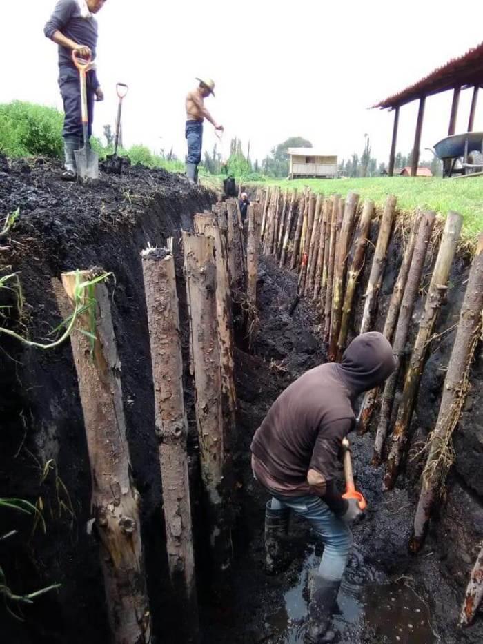 Elaboración de chinampas. La chinampa-refugio para la conservación del axolote en un Xochimilco sostenible