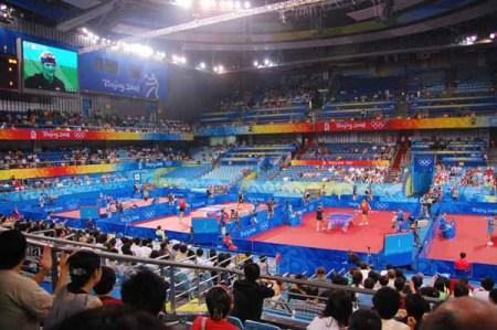 The Table Tennis Stadium
