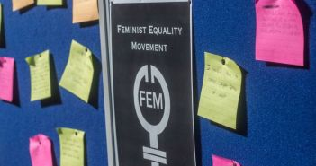 FEM board