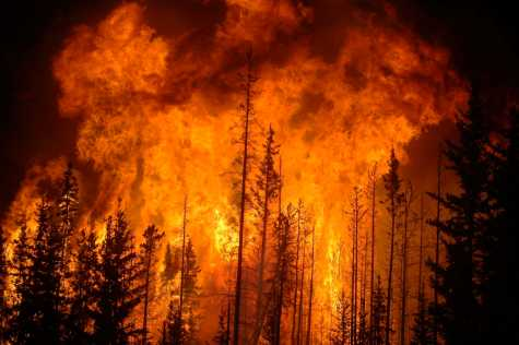 California, western wildfires  ignited by human ignorance