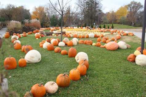 Local Foods Education Center donates over 5,000 pumpkins