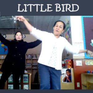 Singing Little Bird