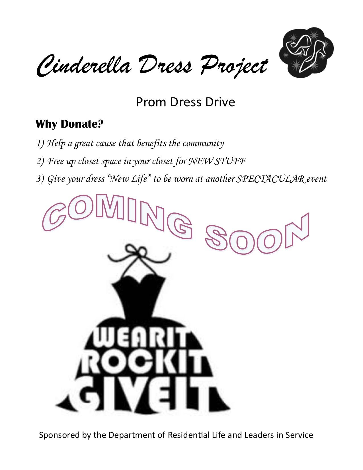 Cinderella Dress Project Myinvolvement