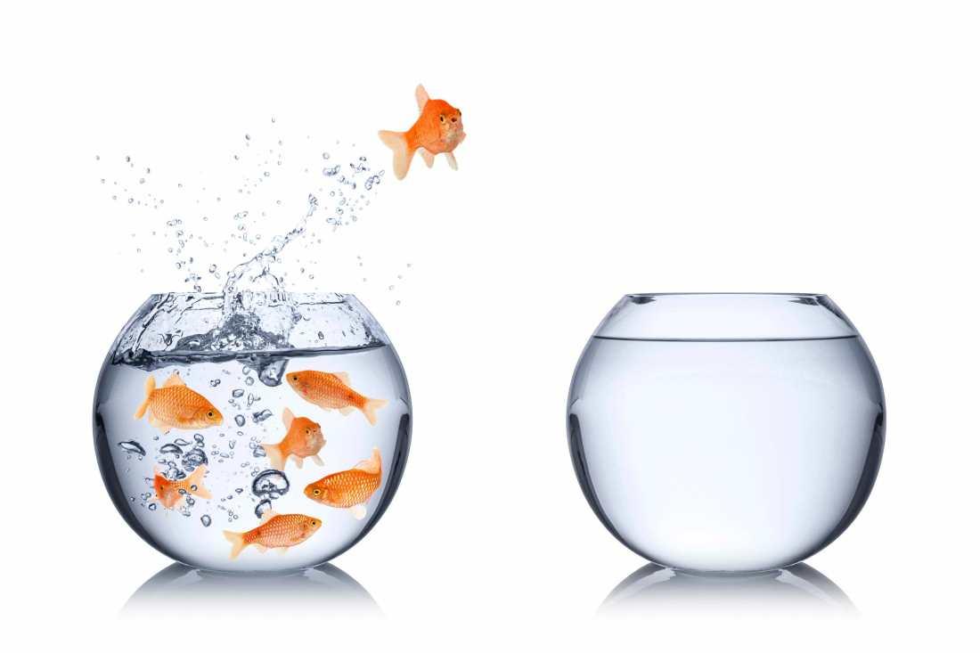 Dépasser la peur du changement, c'est oser pour trouver le chemin de la réussite