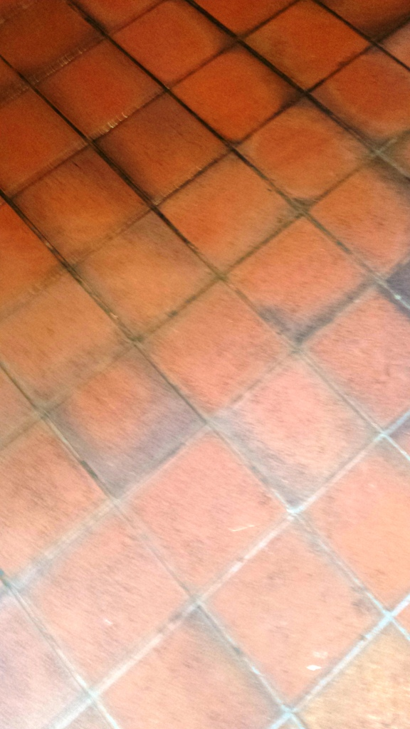kitchen floor cleaning Archives  South East Wales Tile
