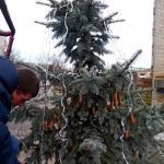 В микрорайоне украсили новогоднюю елку