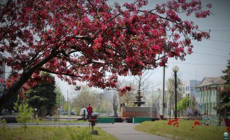 Весенний Геническ