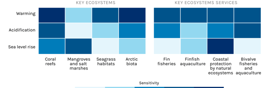 Ocean solutions for climate change