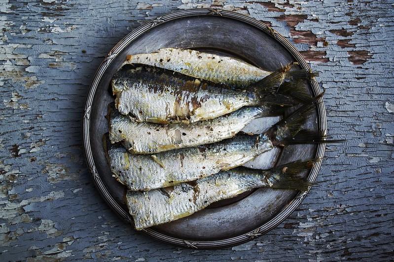 sardines Oregon State University