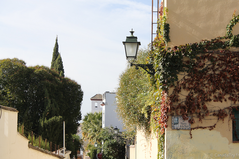 grenade-andalousie-alhambra-38