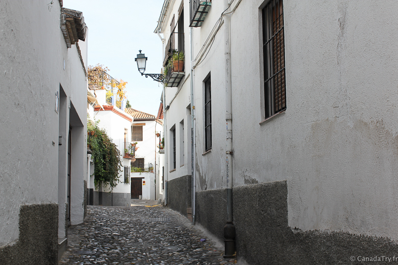 grenade-andalousie-alhambra-39