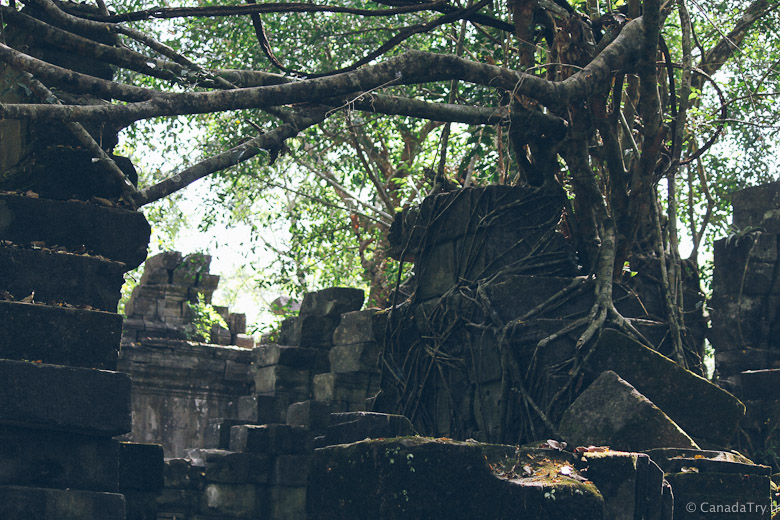 beng mealea temple angkor