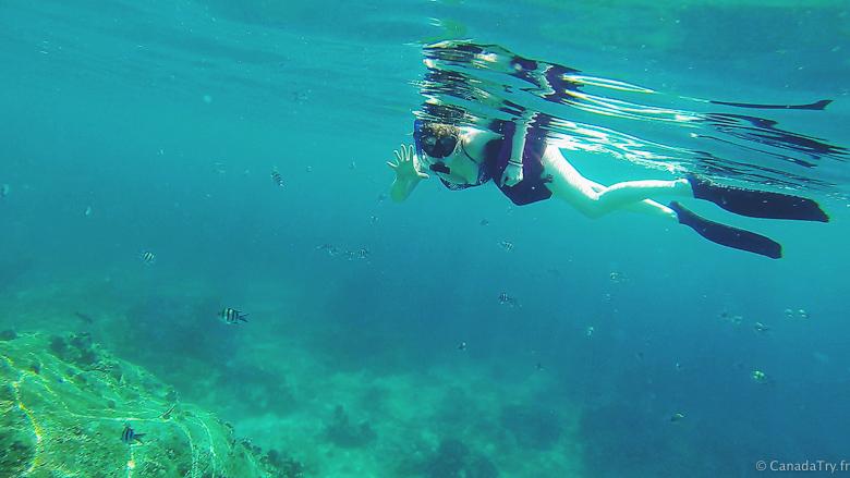 snorkeling similan islands