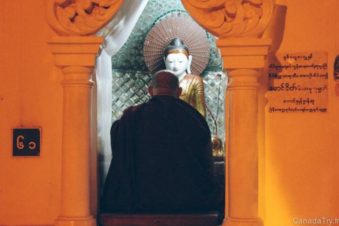 moine shwedagon pagoda