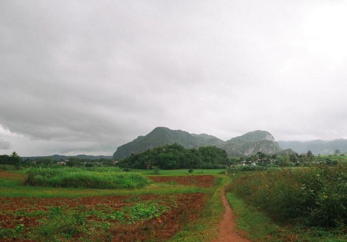 paysage randonnée à vinales cuba