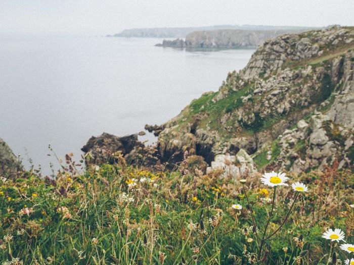 paysage de la Pointe du Van, Finistère